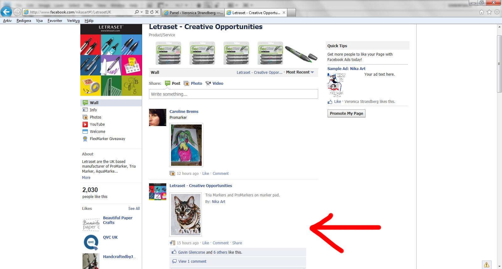 Skärmdump på letrasets fan page.